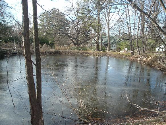 WETLANDS FILTER SYSTEM IN NASSAU AND SUFFOLK COUNTIES